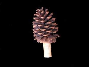 Pine Cone Finial